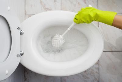 How to Clean a Toilet #Adulting